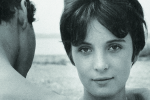 """L'amore normale"" a PBS Personal Book Shopper"
